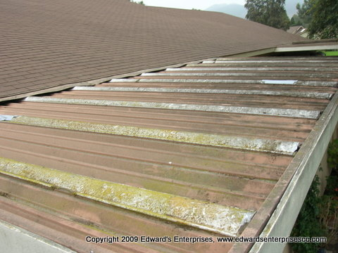 Edward's Enterprises Pressure Wash Service: Light pressure is needed when cleaning delicate skylights and patio covers, sometimes it is best to clean by hand.