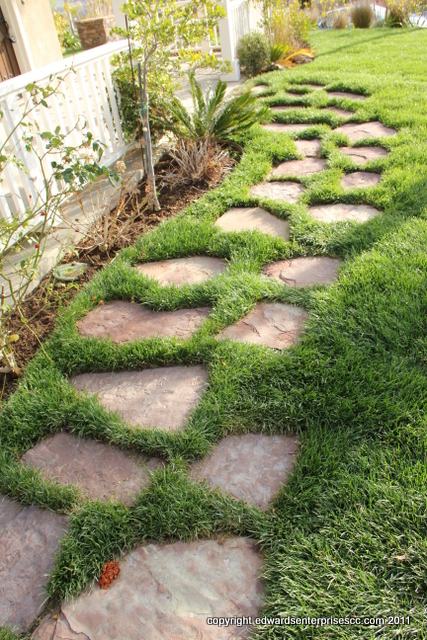 Our Canoga Park Handyman Services include front yard & back yard work like this sod maintenance, planting, trimming, clean outs, & more.