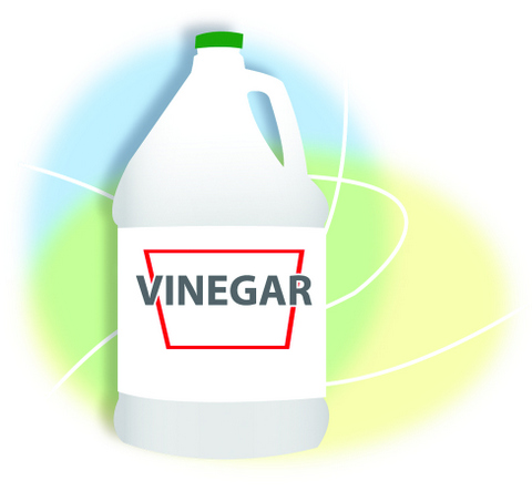 how to clean pipe with vinegar