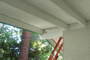 Carpentry Fascia Dryrot Refinish - Carpentry