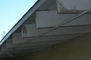 Carpentry Fascia Dryrot Renovation