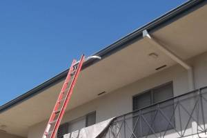 Carpentry Fascia Repaint Repairs