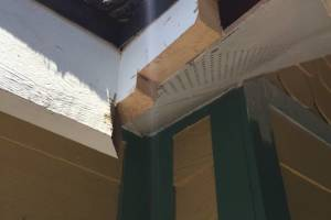 Carpentry Fascia Rot Repair - Carpentry