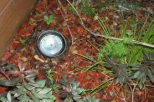 Landscaping Lighting Lamp Repair