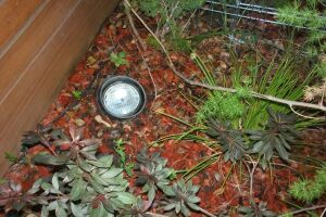 Landscaping Lighting Lamp Repair - Landscaping