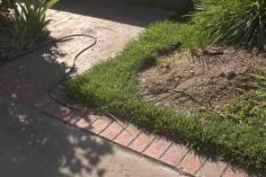 Landscaping Lighting System Maintenance