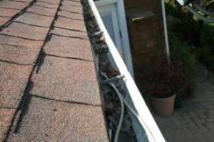 Landscaping Rain Gutter Cleaning Leaves - Landscaping