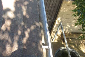 Landscaping Rain Gutter Tree Debris Cleaning - Landscaping