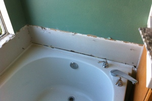 Plumbing Tub Shower Dryrot Bath Remodel - Plumbing