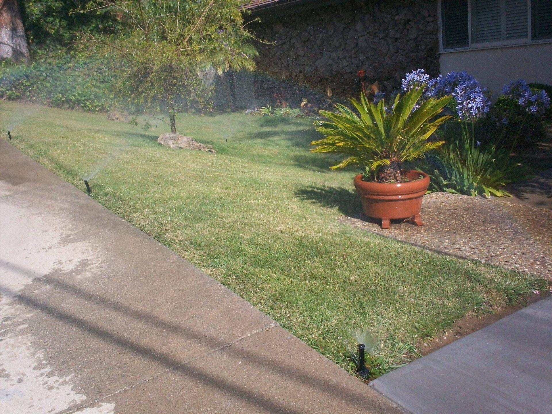 Landscape Sprinkler Repair Drip System Installation