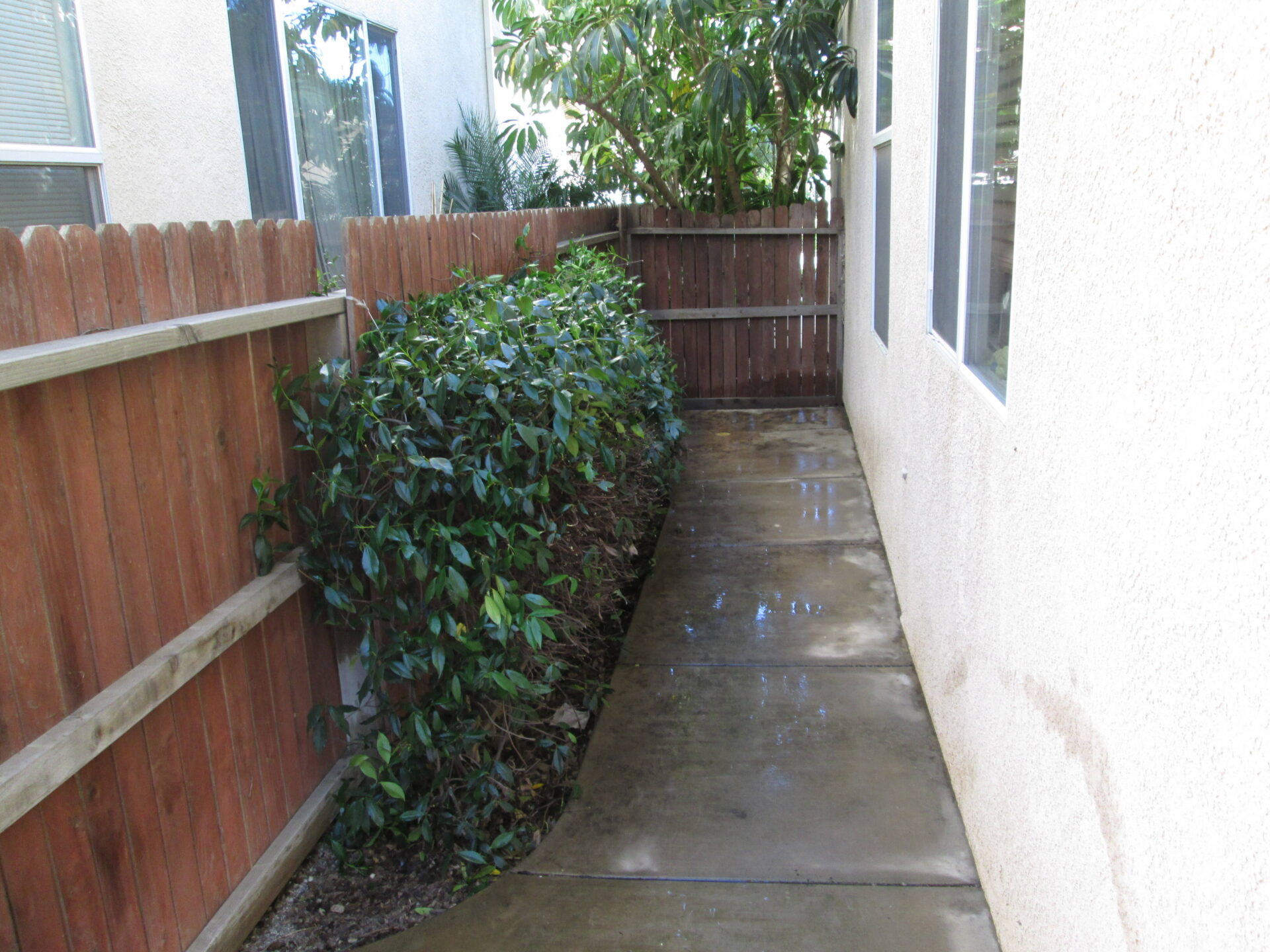 Backyard Home Landscape Clean Ups Amp Outdoor Improvements