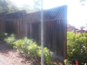 Fence, before extension added