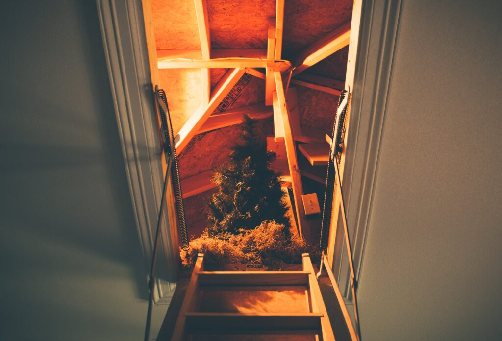 Christmas tree at the top of the attic ladder