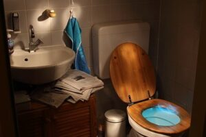What is the Difference between a Gravity Flush Toilet and a Pressure Assisted Toilet?